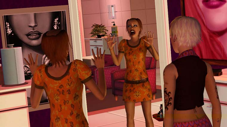 Image from The Sims 3 Ambitions
